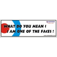 What do you mean?, I am one of the faces Window Cling